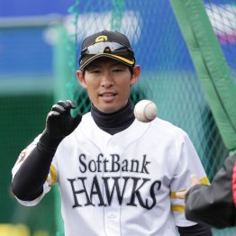 SB新コーチ本多雄一はノックでも年上選手には「さん」付け
