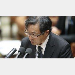特別監察委の樋口美雄委員長は問題答弁を連発(C)日刊ゲンダイ