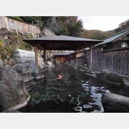 静岡県・桜田温泉「山芳園」(提供写真)