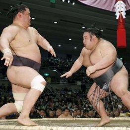 妙義龍(左)を正面から粉砕