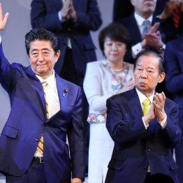 大阪W選対応で浮き彫り 二階幹事長vs安倍官邸の深刻対立