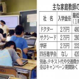 「低価格の家庭教師」を上手に選んで受験を突破するコツ