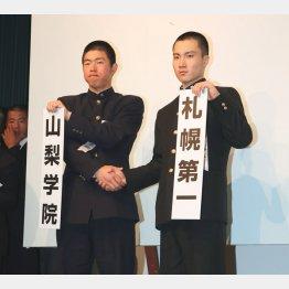 山梨学院のセンバツ初戦は札幌第一(C)日刊ゲンダイ