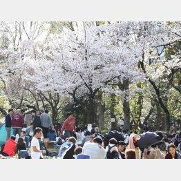 春からの新生活に備えたい(C)日刊ゲンダイ
