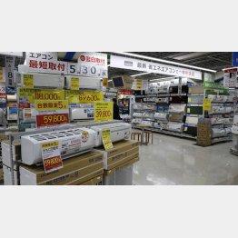 ネット店舗の品ぞろえは実店舗並み!?(C)日刊ゲンダイ