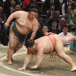 貴景勝(左)と千代大龍