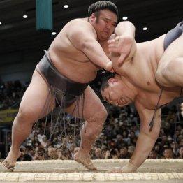 春場所10日目、貴景勝(左)が引き落としで鶴竜を破った