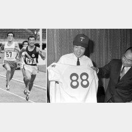 澤木(左)の走りは世界でもトップクラスだった。飯島はプロ野球界へ。69年からロッテオリオンズでプレーした(C)共同通信社