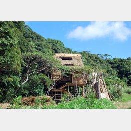 沖縄・国頭村やんばるの森で見た鬼太郎ハウスのセット(C)日刊ゲンダイ
