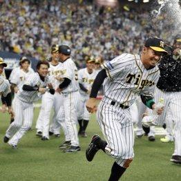 阪神鳥谷 サヨナラ勝ちに貢献も「年俸4億円なら当然」の声
