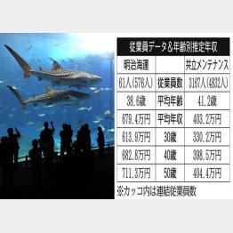 明治海運と共立メンテナンス(写真は、沖縄美ら海水族館)(C)日刊ゲンダイ