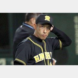 矢野監督は早くもこの表情(C)日刊ゲンダイ