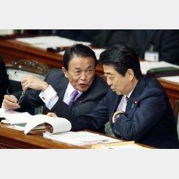 麻生財務相と安倍首相(C)日刊ゲンダイ