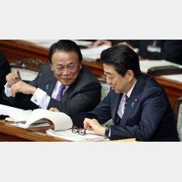 忖度を余儀なくさせた安倍首相と麻生副総理(C)日刊ゲンダイ