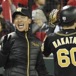 「我慢できない」は嘘 矢野監督よ虎ファンを見くびるな!