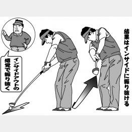 (イラスト・渡辺隆司)