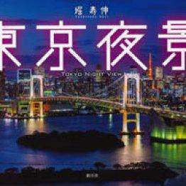 「東京夜景」堀寿伸著