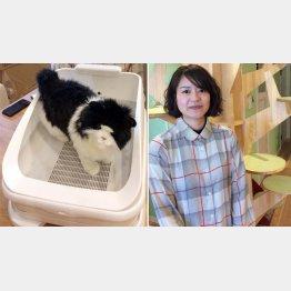 愛猫の健康管理ができる「トレッタ」(左)と「ハチたま」の松原あゆみ氏(提供写真)