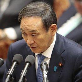 菅長官の大誤算…ドコモ通信量4割値下げはメリット不透明