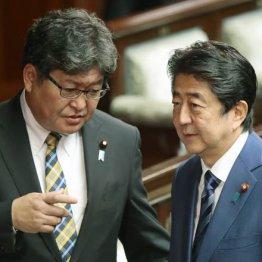 自民・萩生田氏「消費増税延期」発言に隠された姑息な狙い
