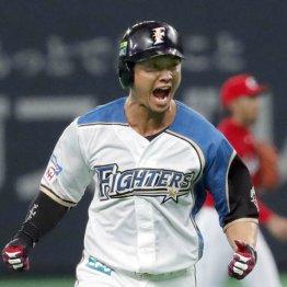 日ハム西川に「あの投手どうだ?」と聞くと、即座に「行けます」と1球目に盗塁成功