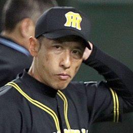 最下位阪神に「監督もフロントもクビ!」とファン絶望の声