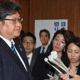 報道陣の質問に答える自民党の萩生田光一幹事長代行