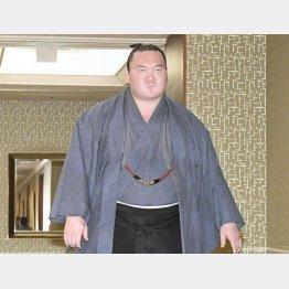 24日、協会の理事会に向かう白鵬(C)共同通信社