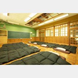 教室でおやすみなさい(さる小)/(提供写真)