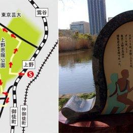 """上野から湯島天神へ 文豪に触れる散歩の締めは""""かつ飲み"""""""