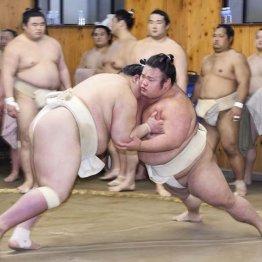 """相撲とは""""無事これ名馬"""" 新大関・貴景勝ずぬけた運動神経"""