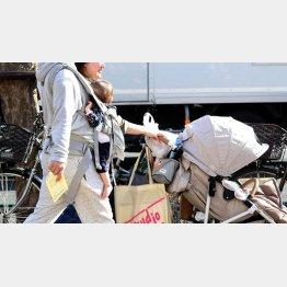 年金を減額されながら保険料を払う…(C)日刊ゲンダイ