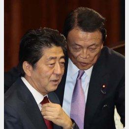 安倍首相(左)と麻生財務相(C)日刊ゲンダイ