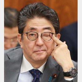 目くらまし政治(C)日刊ゲンダイ
