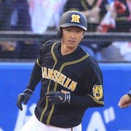 """阪神近本がセ首位11盗塁 とんだ""""外れ外れ1位""""がいたものだ"""