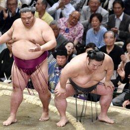 """天敵倒すも負傷休場…貴景勝""""右ヒザ爆弾""""がまねくケガ連鎖"""