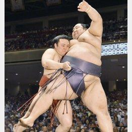 夏場所初日、炎鵬(左)は寄り切りで巨漢・徳勝龍を破る(C)共同通信社
