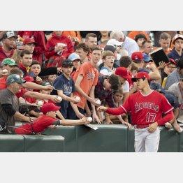 大谷の人気は根強い(C)ロイター/USA TODAY Sports