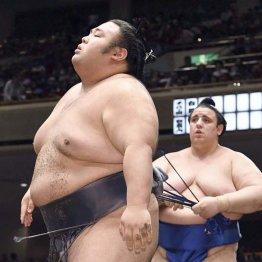 9日目から再休場 新大関・貴景勝「休むのは簡単」の勘違い