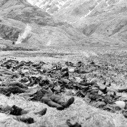 大本営に見捨てられ最初の玉砕を命じられたアッツ島の戦い