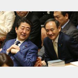 令和ファシズムタッグ(C)日刊ゲンダイ