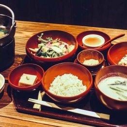 箱根湯本温泉「養生館 はるのひかり」で注目の現代湯治を