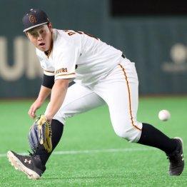 """球宴中間発表セ一塁手1位 G岡本は""""たらい回し""""で左翼に?"""