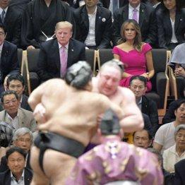 千秋楽を観戦する(上左から)安倍首相、トランプ大統領、メラニア夫人、昭恵夫人