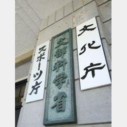 福沢光祐容疑者の職場、文科省の机の引き出しからも押収(C)日刊ゲンダイ