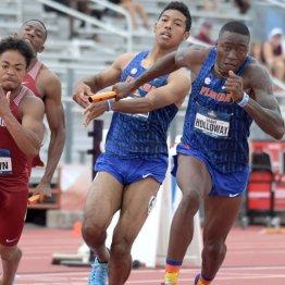 サニブラウン100m9秒台連発で 五輪リレー走者選考は大混戦