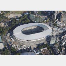 新国立競技場スタジアム周辺の木材も供給(C)共同通信社
