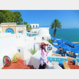 """チュニジア首都チュニスの近郊「シディ・ブ・サイド」は""""白と青の小さな楽園""""と称される/(撮影・歩りえこ)"""