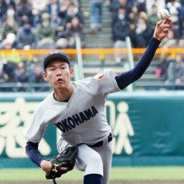 神奈川大会は横浜の甲子園確率が80% 対抗は東海大相模