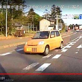 高速逆走は「違反2点・反則金9000円」交通事故の罪と罰